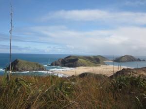 top nouvelle-zélande - Cape Reinga - Motuopao Island