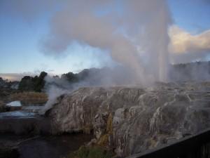 Visiter Rotorua - Geyser Te Whakarewarewatanga