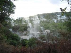 Visiter Rotorua - Vallée géothermale