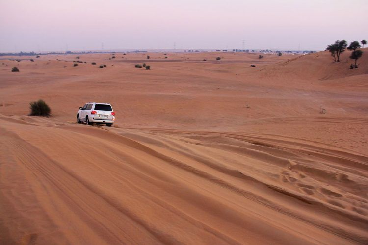 excursion-desert-dubai