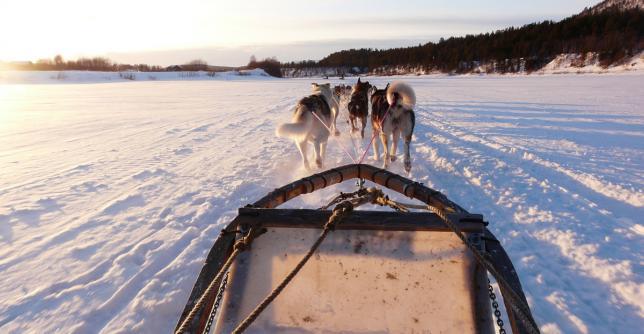 Voyage Laponie