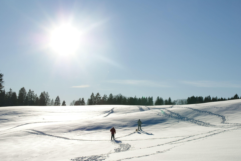 Passer ses vacances d'hiver en France