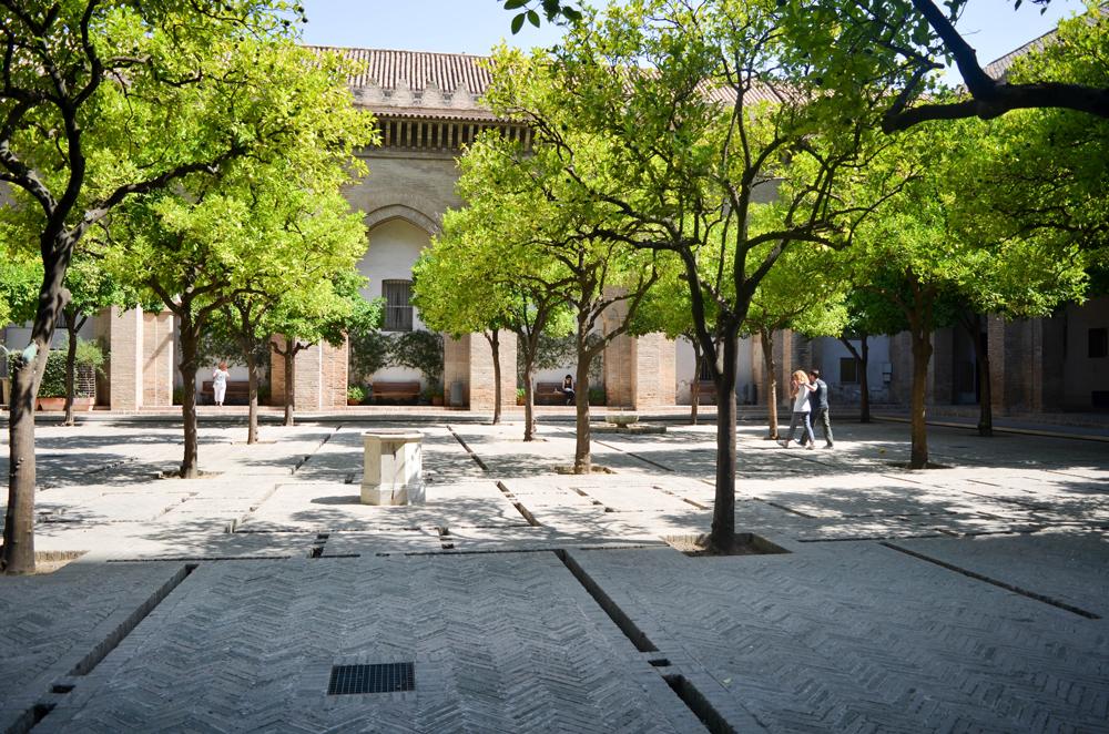 Cour Cathédrale de Seville