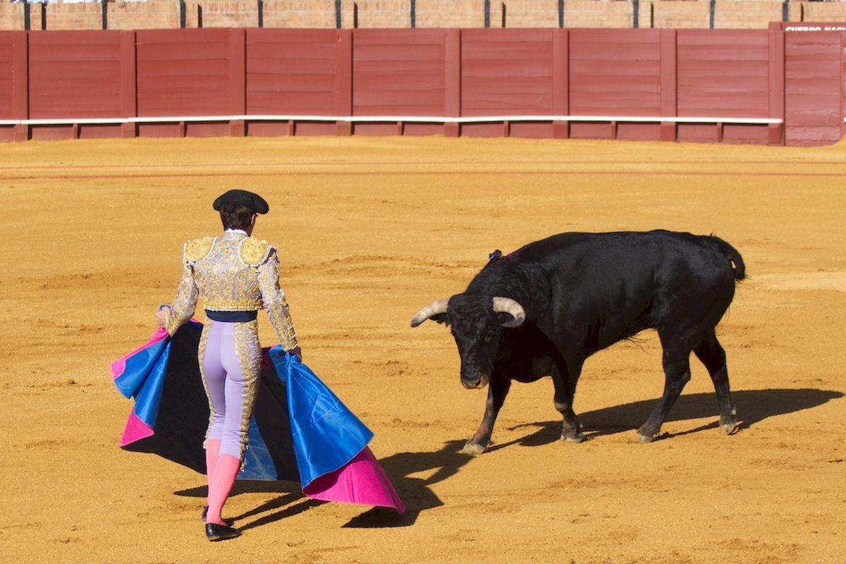 Corrida-Seville