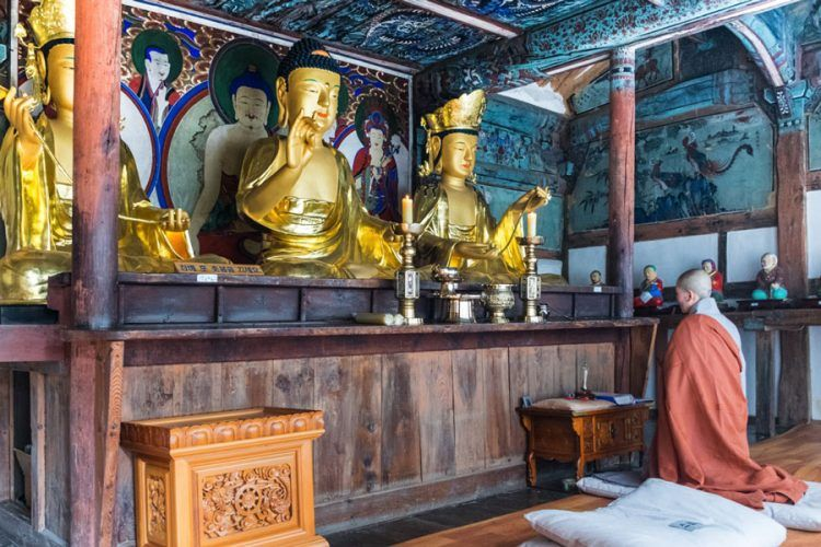 moine-qui-prie-bongjeongsa-temple-