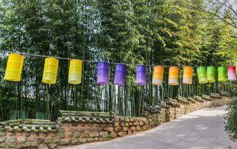 temple-bouddhiste-coree-du-sud-2