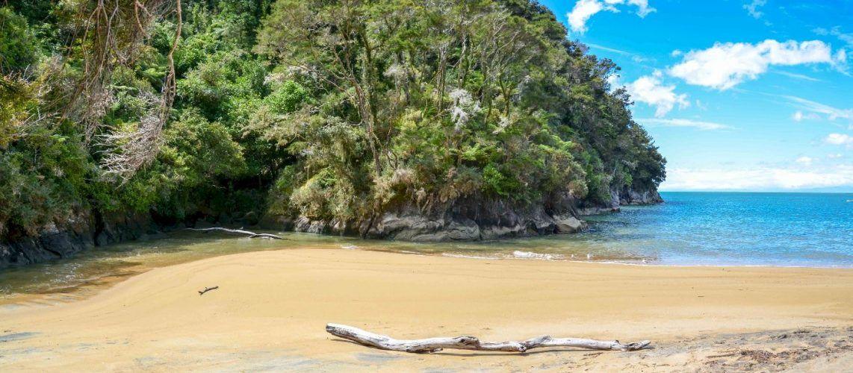 NZ-abel-tasman--3
