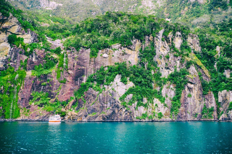 Croisière Milford Sound : Compagnies, tarifs, avis