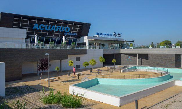 Aquarium de Séville : Avis, infos et réservation