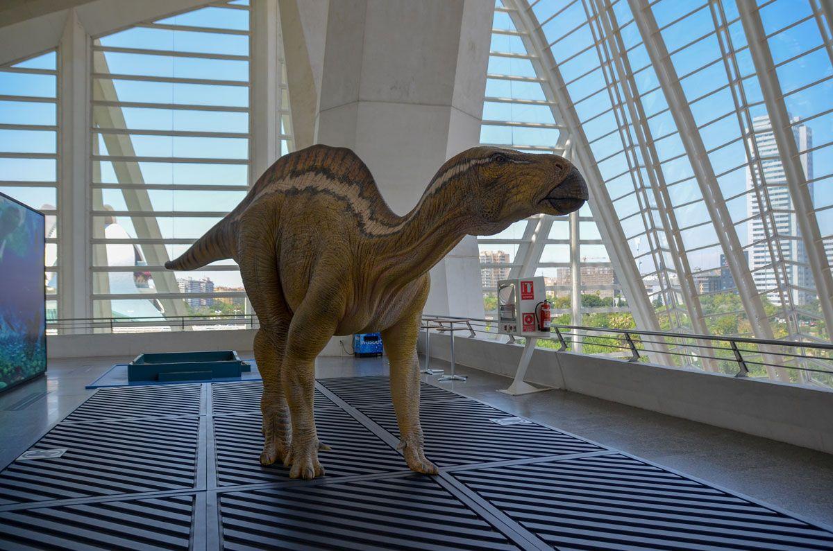 dinosaure-musee-des-sciences-valence