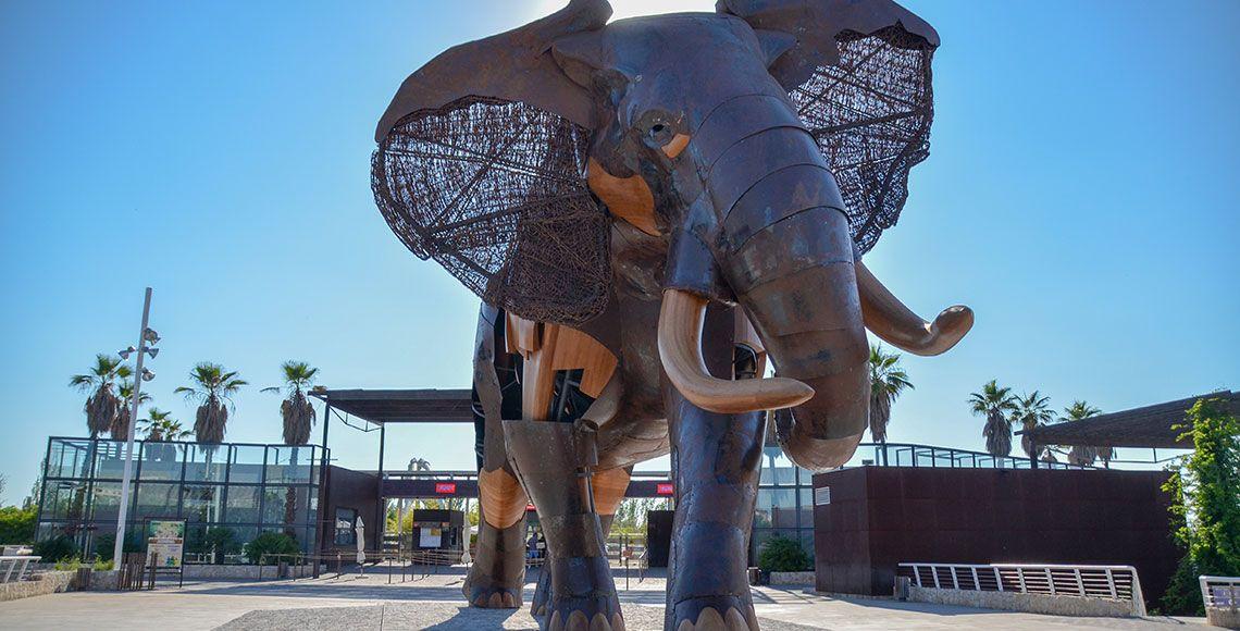 Visiter le Bioparc de Valence