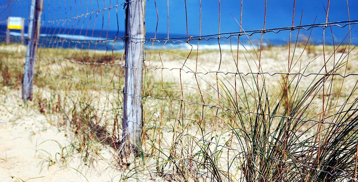 Visiter les Landes : lieux d'intérêts et conseils pratiques