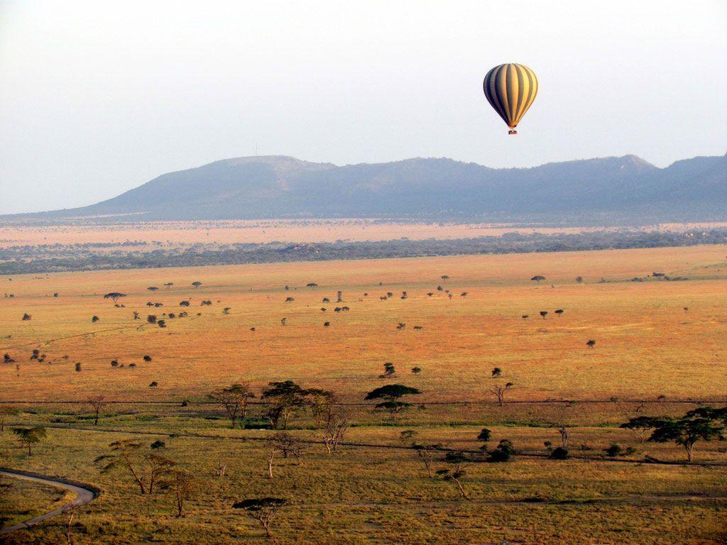 montgolfiere-serengeti