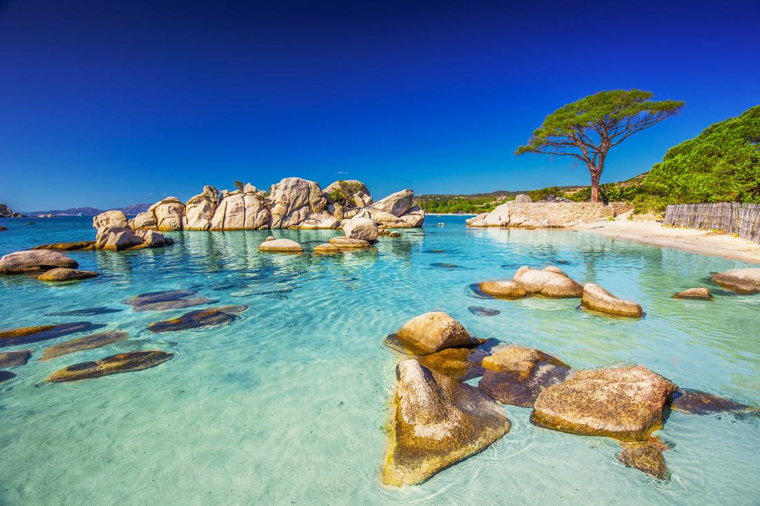 Pallombaggia-Corse
