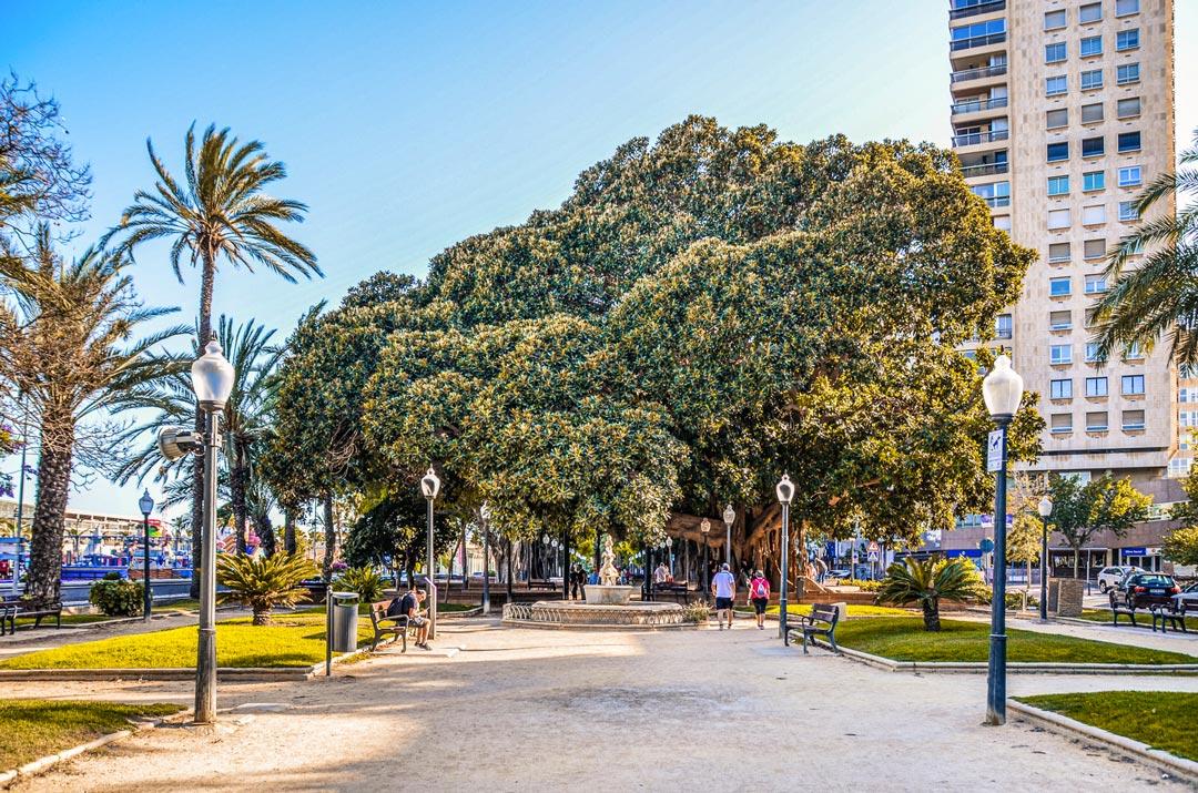 Alicante-esplanade-espana