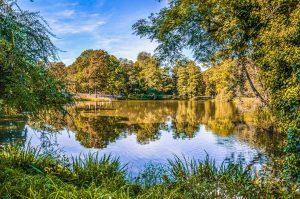 Varsovie-lazienki-park