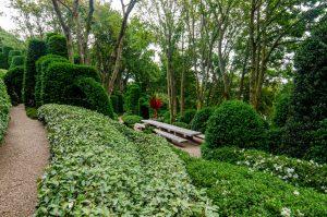 Etretat-jardin-aval
