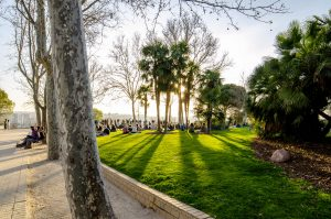 coucher-soleil-parc-oeste-madrid