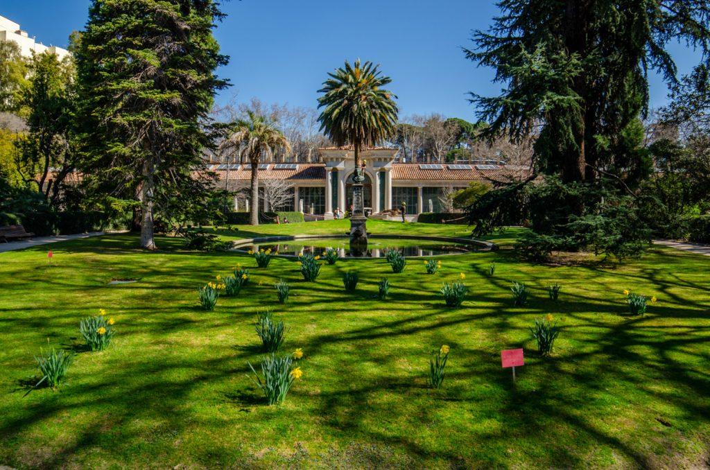 jardin-botanique-madrid